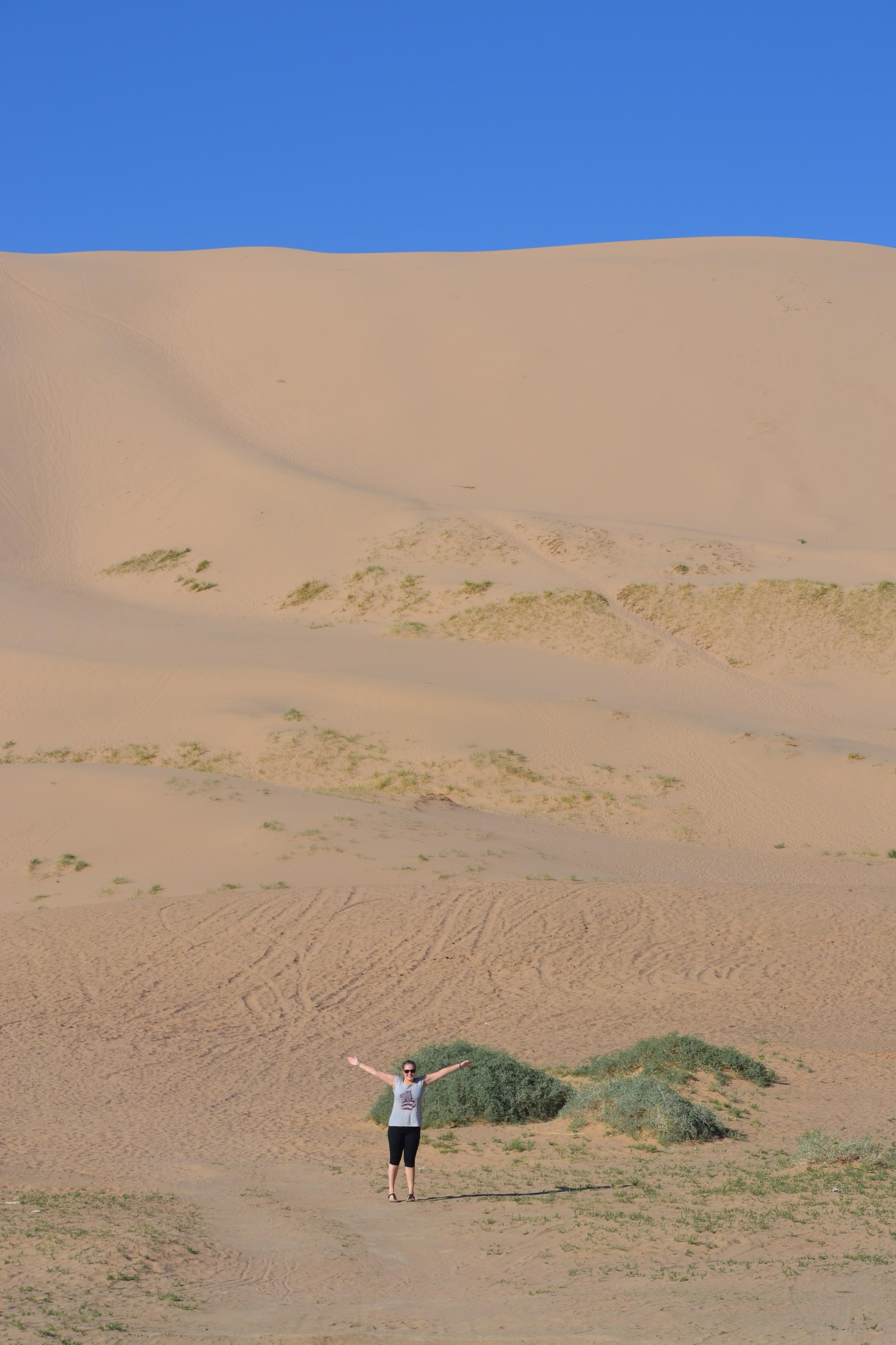 image Khongoryn Els in gobi desert