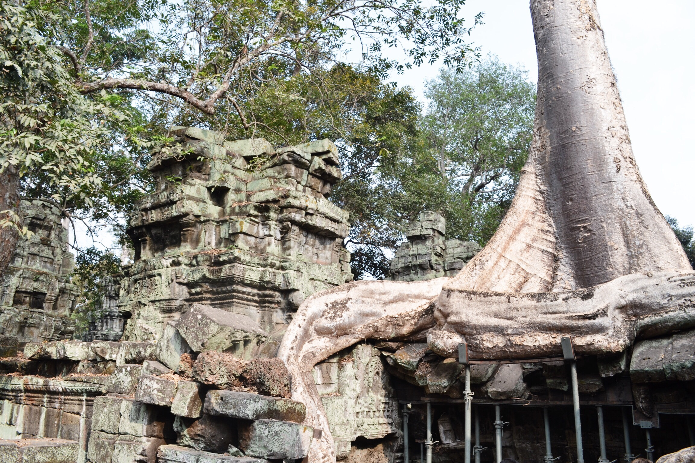 image of ta phrom in Cambodia