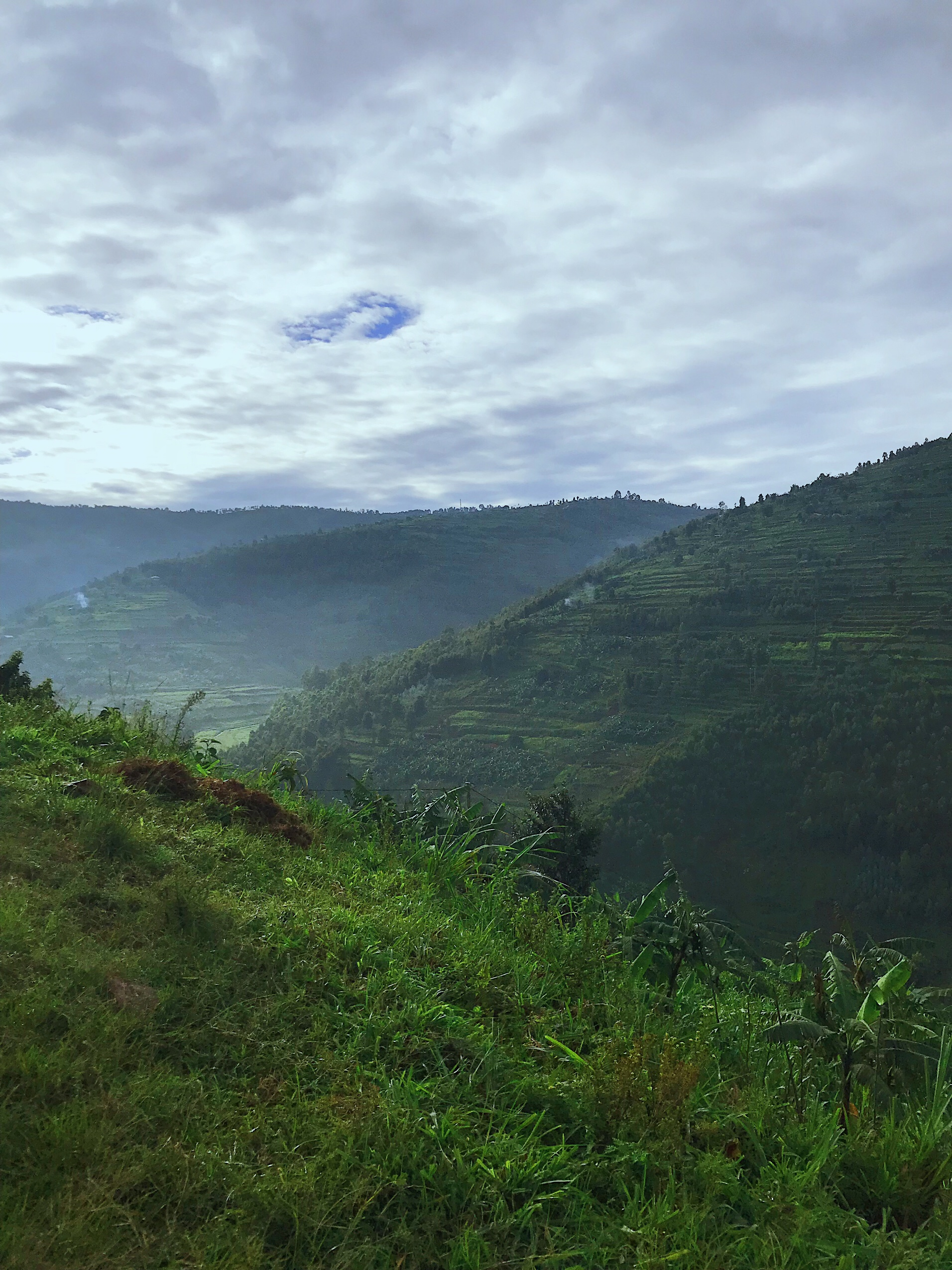 Image of a view of a thousand hills in Rwanda