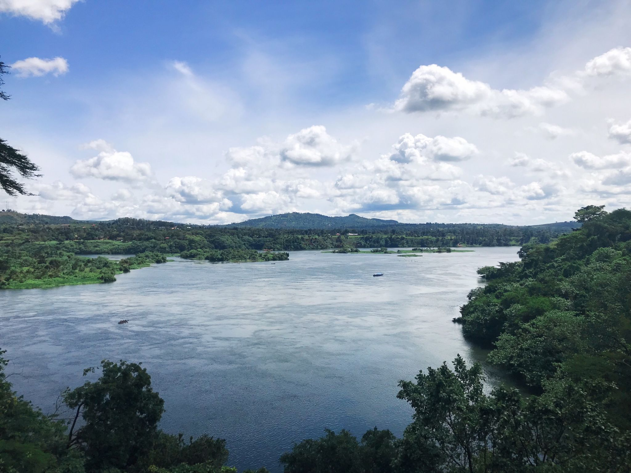 Image of the Nile from Jinja river bank