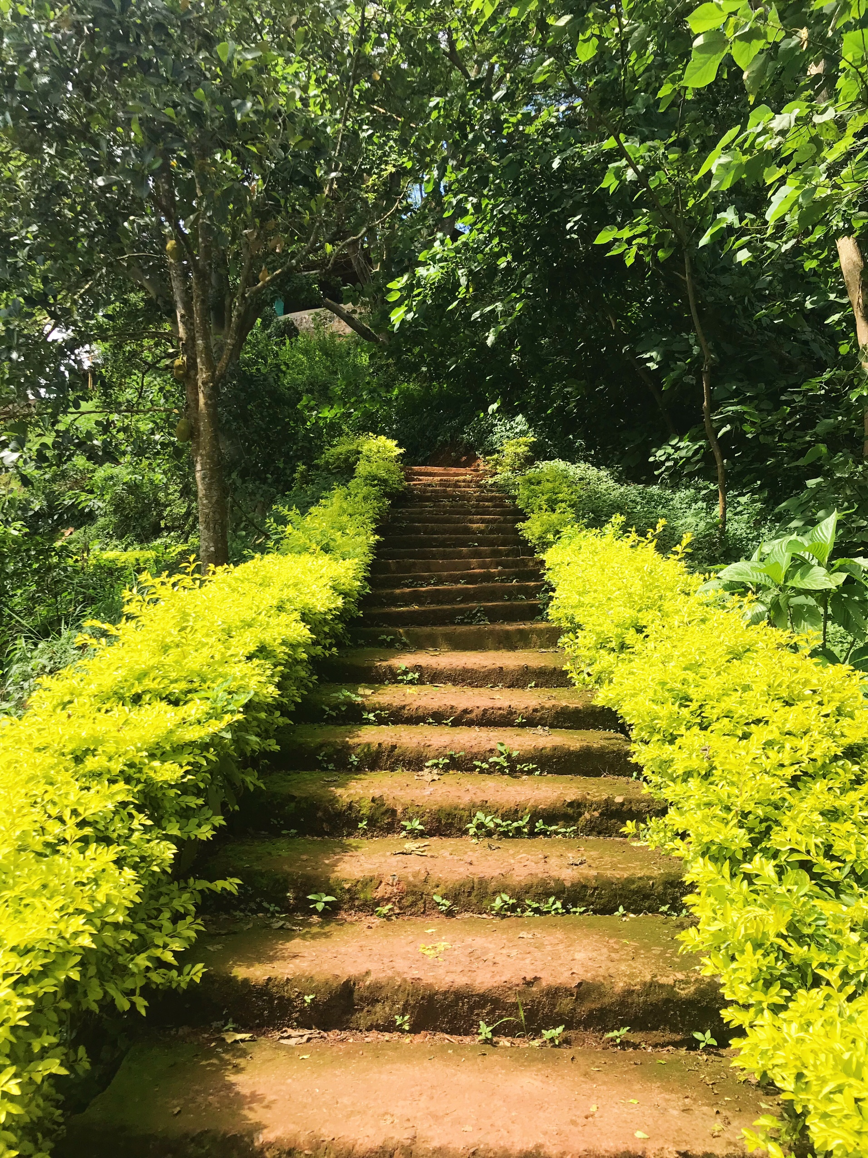 image of steps in Jinja