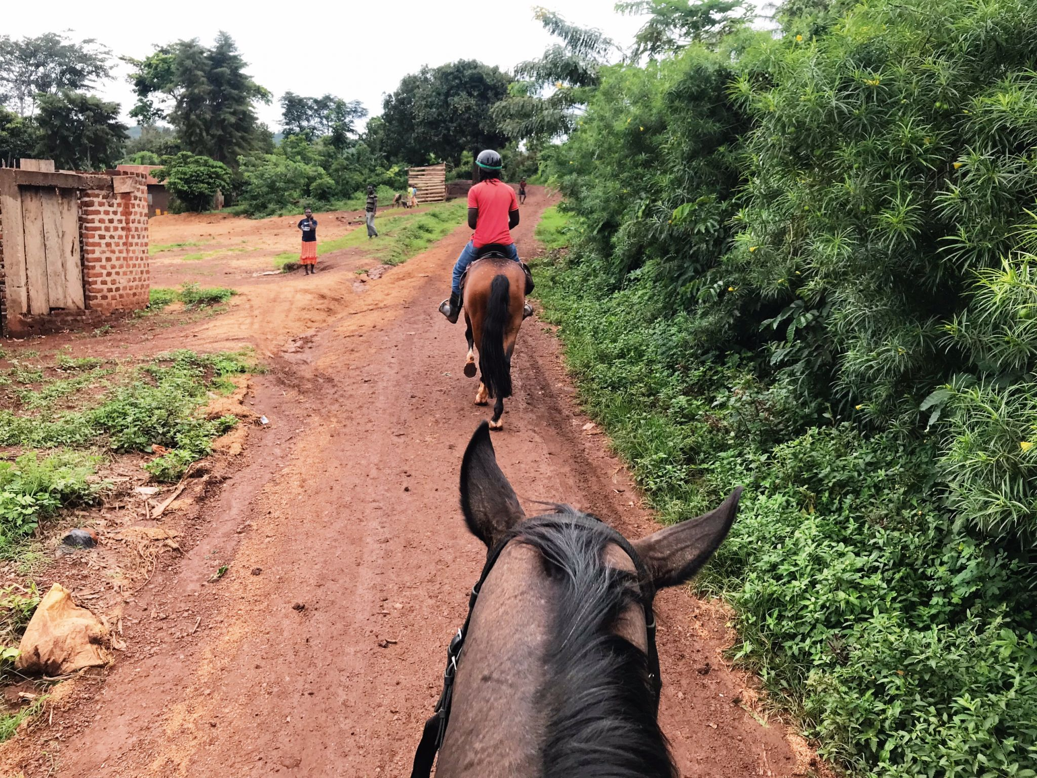 image of horse riding in Jinja