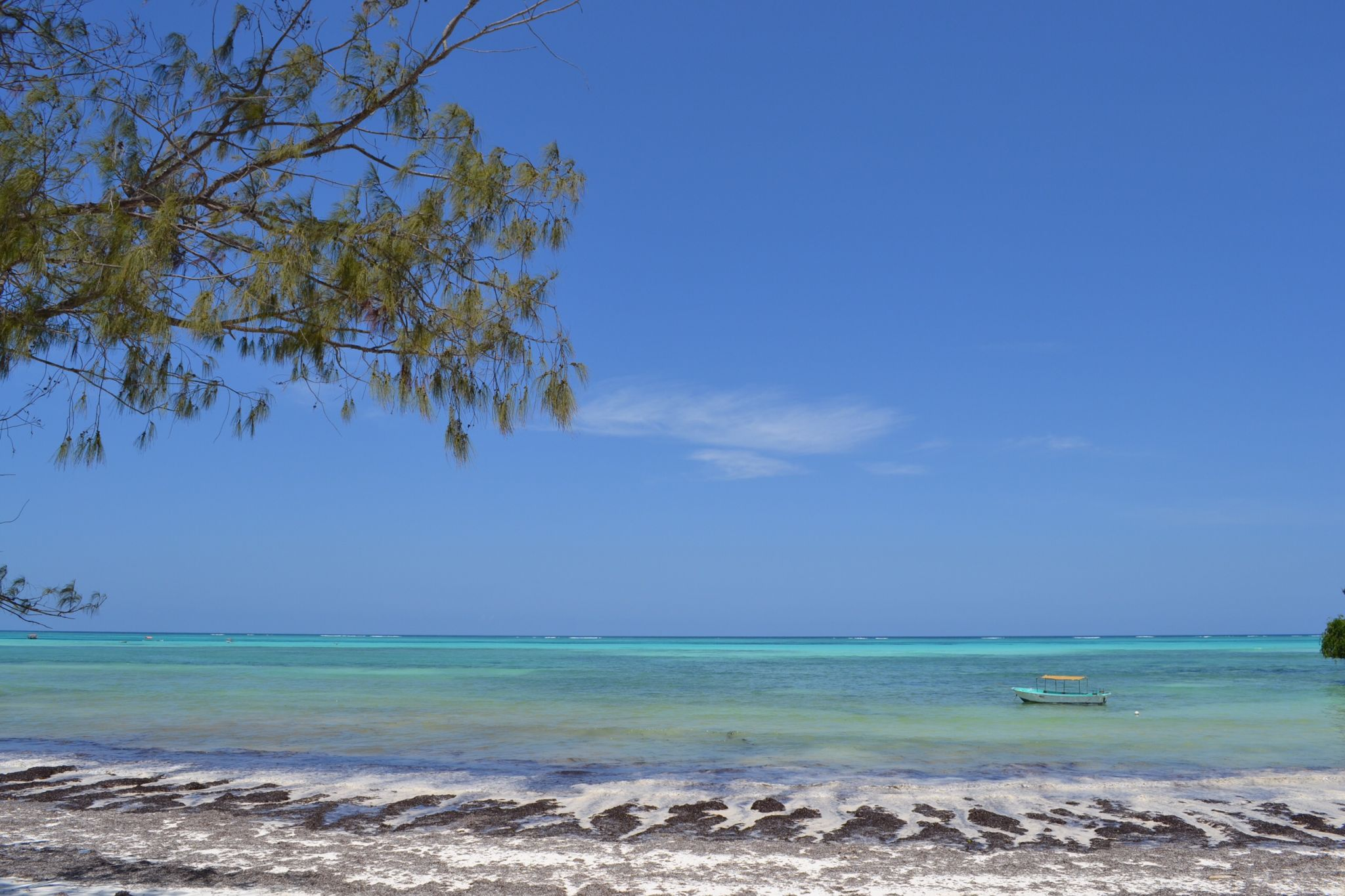image of beach in Zanzibar