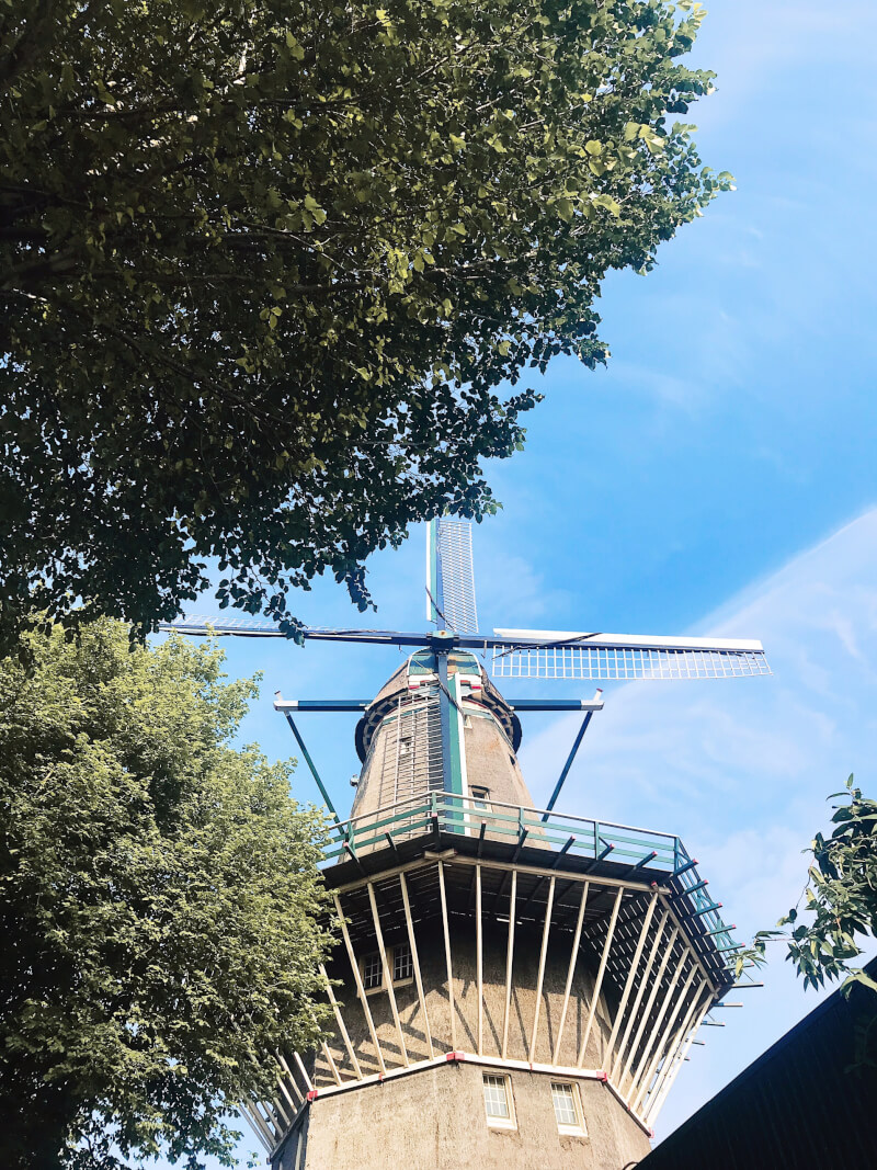 Image of Brouwerij 't ijs windmill stop for drinks 48 hours in Amsterdam