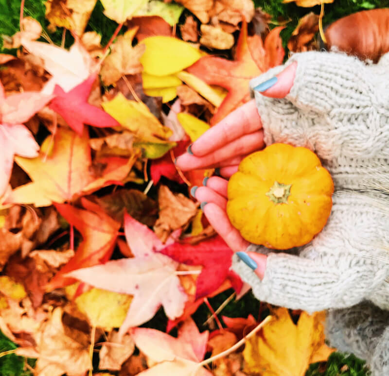 Image of hands and pumpkin, the best places to travel to in Autumn
