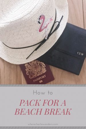 image of how to pack for a beach trip