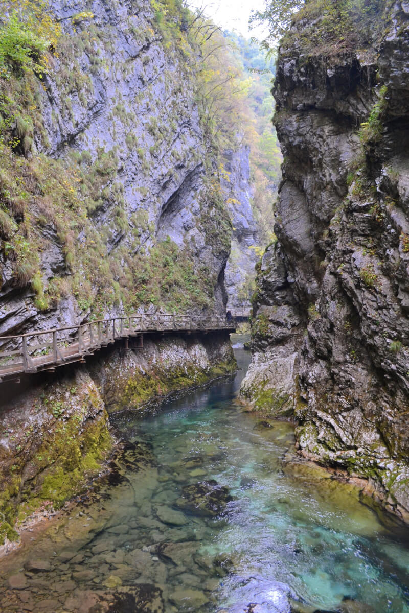 image of vintgar gorge on day trip to lake bled