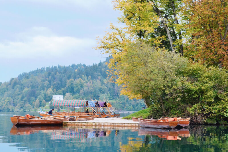 image of plenta boats on lake bled