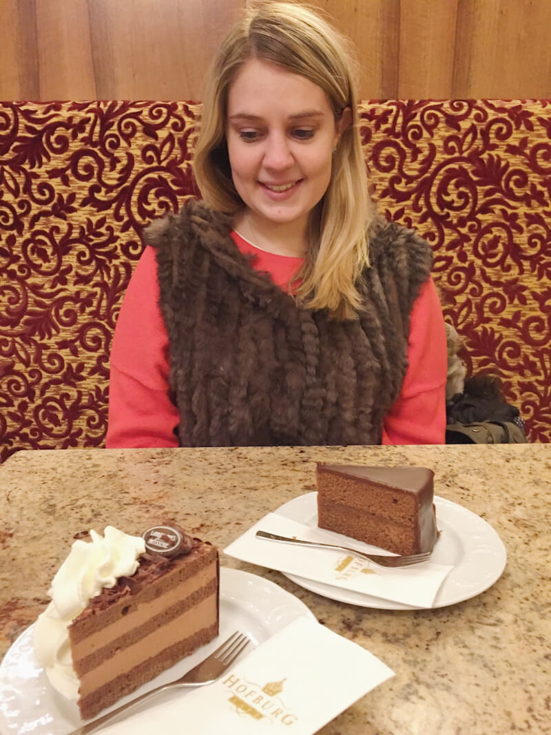 image of Sacher torte in Vienna
