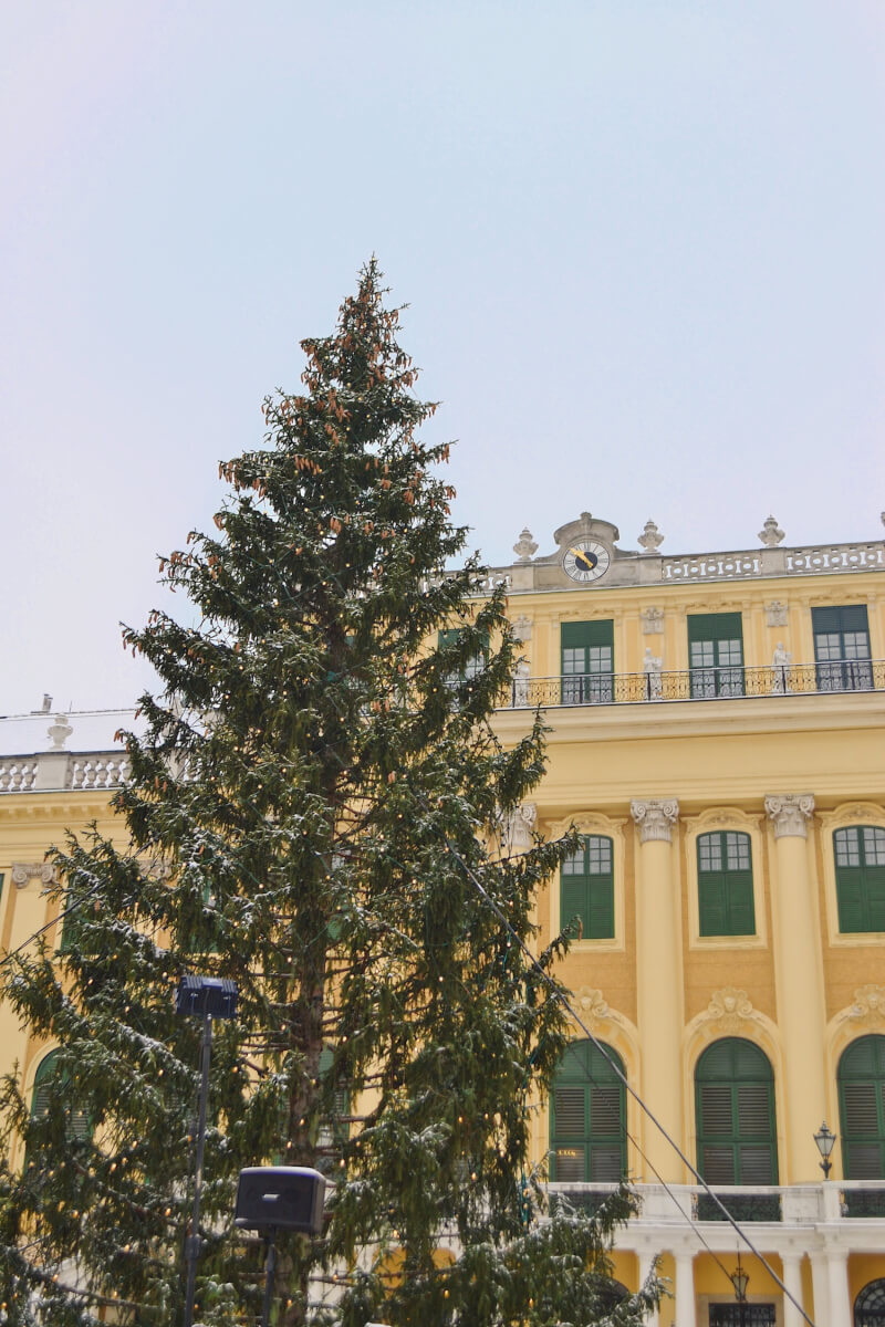 image of Christmas Markets in Vienna, Schonbrunn palace