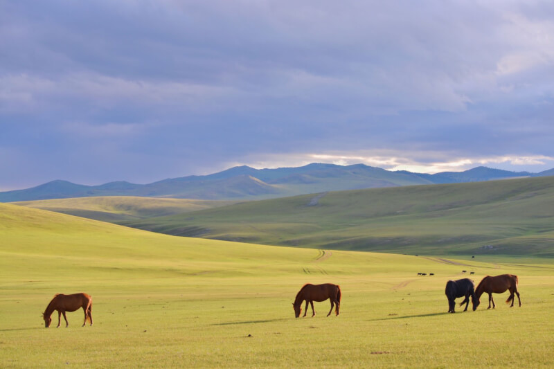 image of landscape of Mongolia, one of the reasons to visit Mongolia