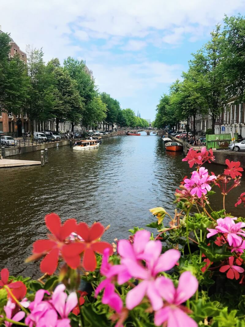 image of Amsterdam - best places to travel to in summer