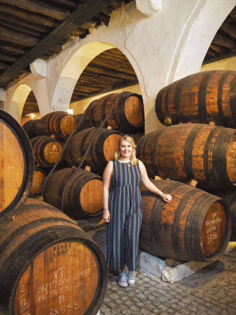 image of cellar on port wine tour in porto