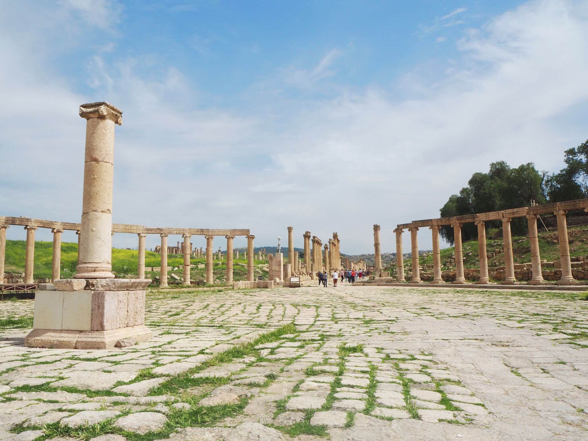 The columns of the roman forum in Jerash - one of the best day trips from Amman