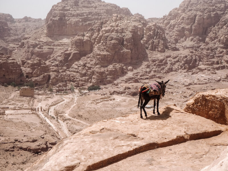 image of hike during a visit to Petra