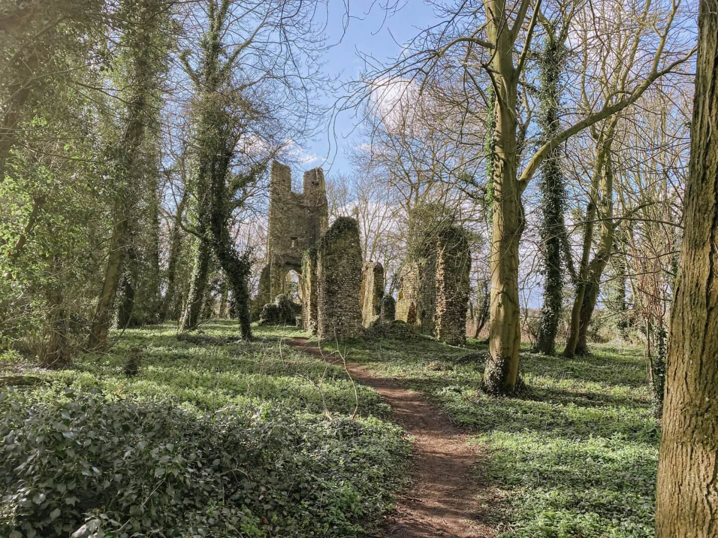 image of st marys ruins in Saxlingham Thorpe, Norfolk