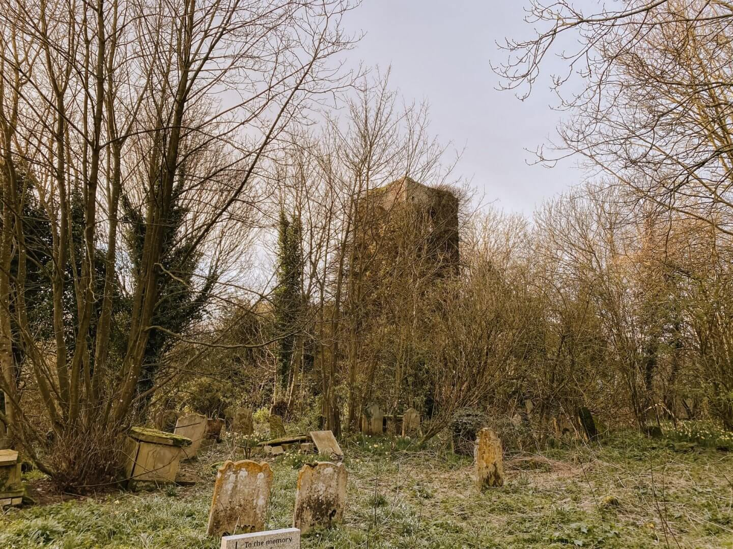 image of the ruins of All Saints, Gillingham in Norfolk