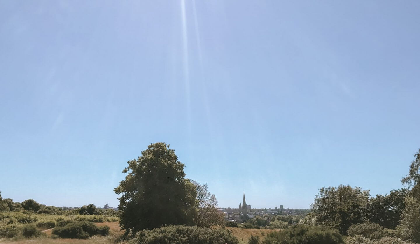 image of the view of the Norwich skyline from Mousehold heath