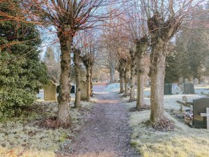 image of Earlham road cemetery in Norwich